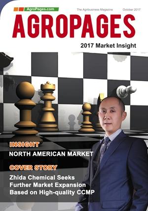 2017 Market Insight