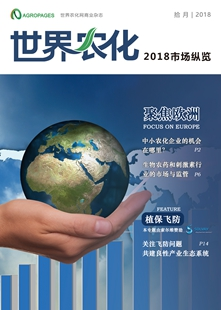 Chinese issue of 2018 Market Insight