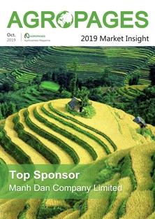 2019 Market Insight