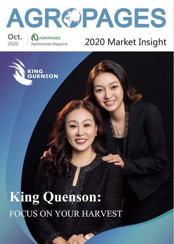 2020 Market Insight