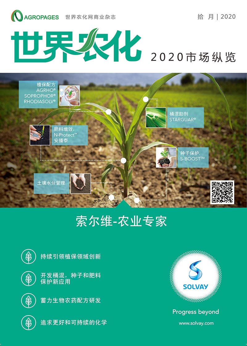 Chinese issue of 2020 Market Insight