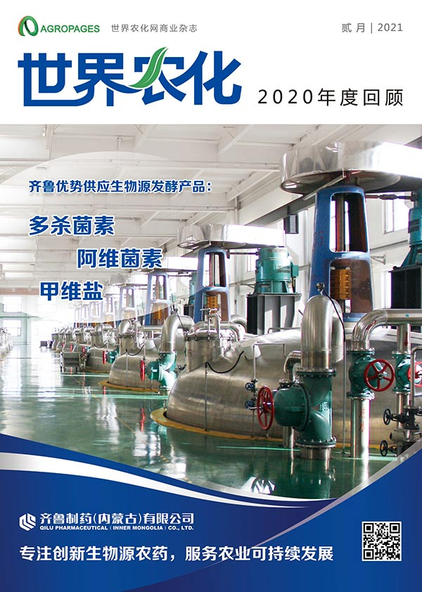 Chinese issue of Annual Review 2020