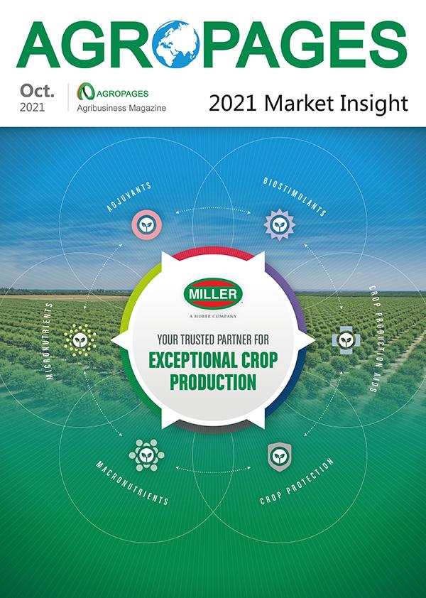 New magazine - 2021 Market Insight