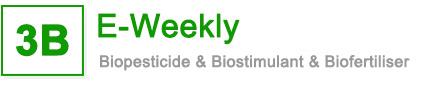 3B Weekly