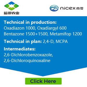 Ningxia Lamtin Agricultural Development Co.Ltd.