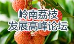 岭南荔枝发展高峰论坛