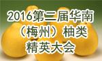 2016第二届华南(梅州)柚类精英大会