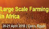 Large Scale Farming in Africa