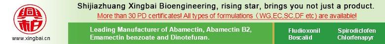 Shijiazhuang Xingbai Bioengineering Co.Ltd.