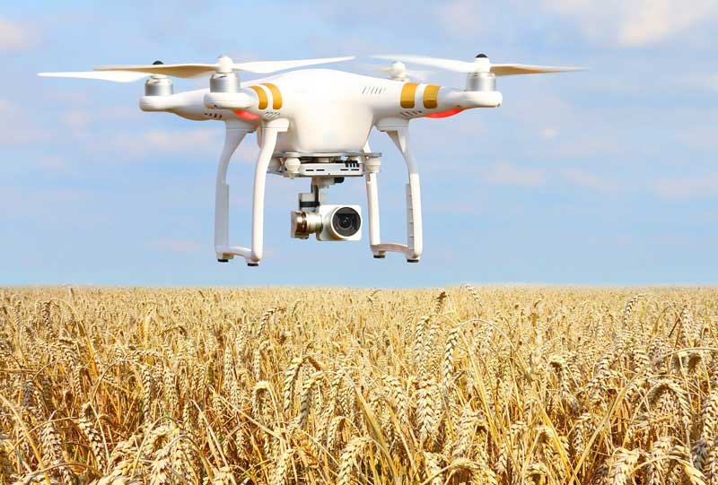 Top 6 Indian AgriTech startups that are revolutionising agriculture