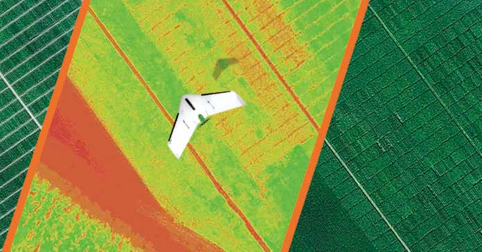 How drone data significantly improves seed breeding and seed production