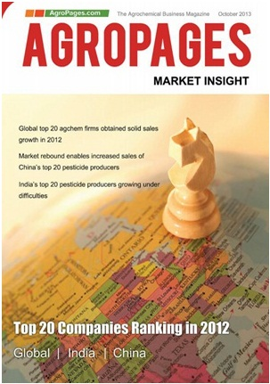 2013 Market Insight