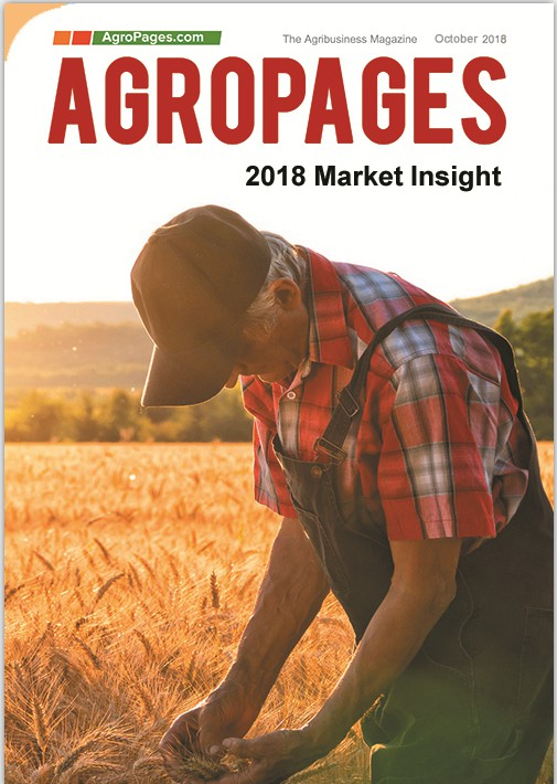 2018 Market Insight