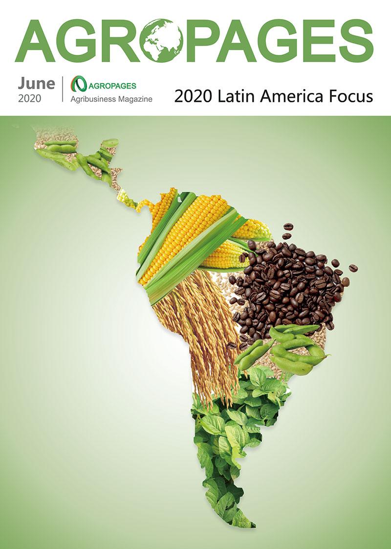 2020 Latin America Focus