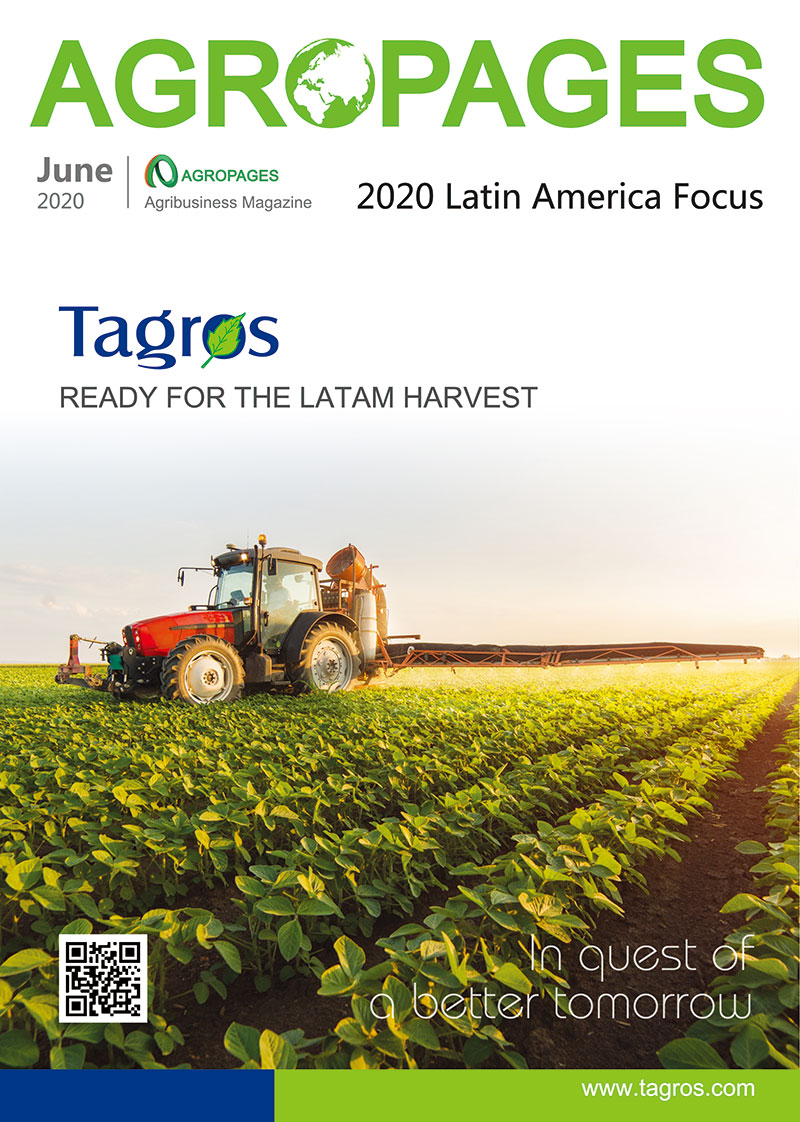 2020 Latin America Focus