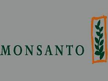 种子及性状业务带动孟山都2012财年销售增长