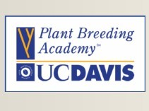 UC Davis launches African Plant Breeding Academy