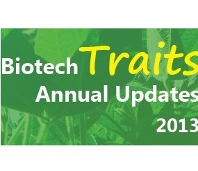 ISAAA updates the annual biotech traits