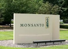 Monsanto, Novozymes Team Up in Bioagricultural Solutions