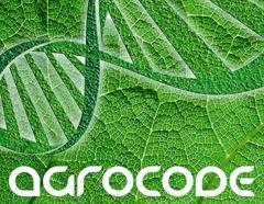 Organic fertilizer using natural beneficial fungi