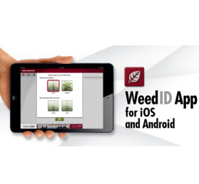 Monsanto embraces smartphone technology with new Weed ID App