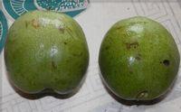 桃果黑斑病防治方法