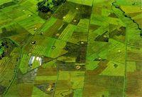 斯里兰卡农药登记策略分析