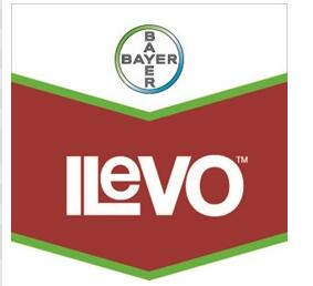 Canada granted label expansion for Bayer's ILeVO seed treatment for nematode suppression in soybeans