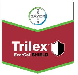 Bayer Canada launches Trilex EverGol SHIELD fungicide and insecticide seed treatment