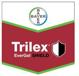 拜耳在加拿大推出Trilex® EverGol® SHIELD大豆种子处理杀菌剂和杀虫剂产品