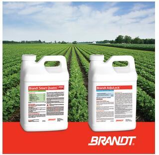 BRANDT公司旗下11款产品被批准与麦草畏、2,4-D混用