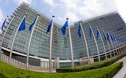 EU approved criteria to regulate endocrine disruptor chemicals