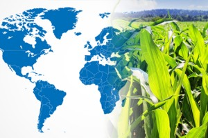 Staphyt signed nine new agri R&D agreements in America