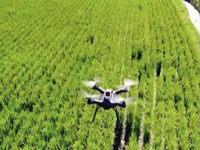 Technology is beginning to transform Indian agriculture