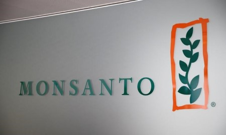 Monsanto looking to sell dicamba-resistant GM soy seed in Brazil