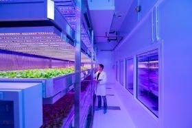 Indoor growing is