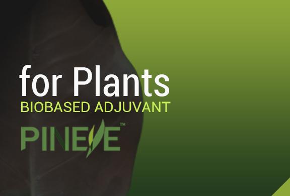 PINEYE®抗蒸腾剂乳油的使用指南和与其它植保杀菌剂复配的功效