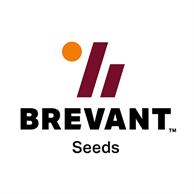 DowDuPont agriculture division announces new premium seed brand