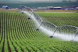 Brazil could increase irrigated crop acreage 65% in six years