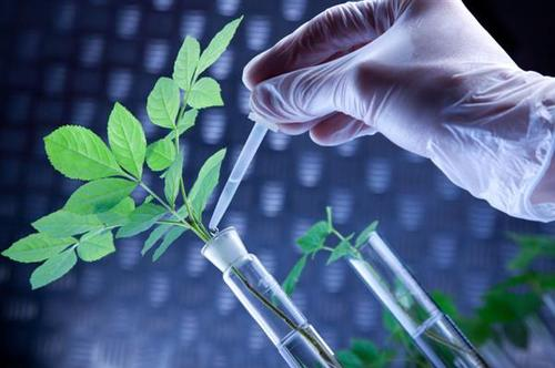 未来RNA疫苗有望取代传统农药