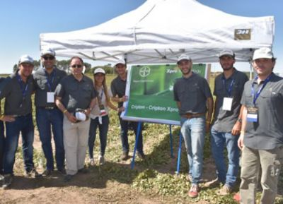 Bayer launched new fungicide Cripton Xpro for peanuts in Argentina