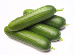 Bayer releases second white paper to highlight market opportunities for more diversity in cucumbers