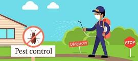 India Punjab Agri Dept to hold Pest Monitoring Programme