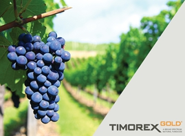 Chile Renews Registration for STK's TIMOREX GOLD® and Expands Uses to Additional Fruits and Vegetables Through 2022