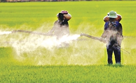 Sri Lanka to revive glufosinate ammonium-based herbicides
