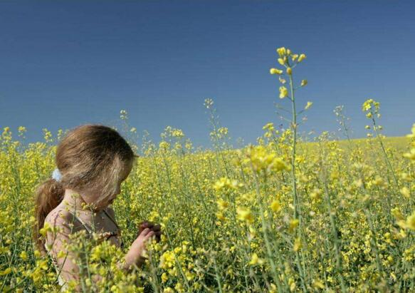 Where is the way out of small and medium-sized European agrochemical enterprises?