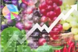 India:Trade expects new agri policy to give impetus to sector