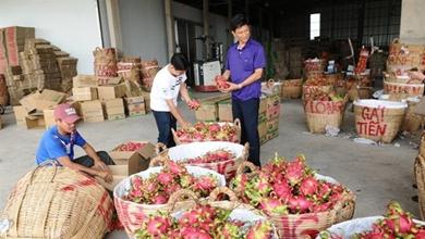 South Korea toughens pesticide rules, Viet Nam expected to be affected