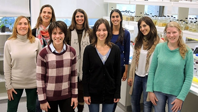 Argentine researchers find HrpE protein can trigger immunity responses in plants