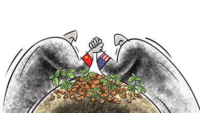 Uncertainties in US-China Trade War Cause Anxiety among Global Soybean Industry